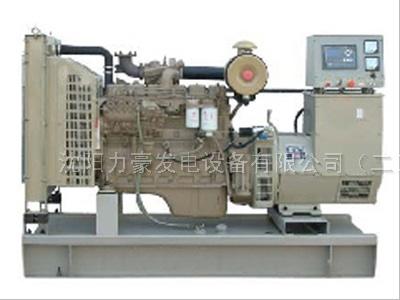 天然气发电机组发电机组各种品牌 微型振动发电机