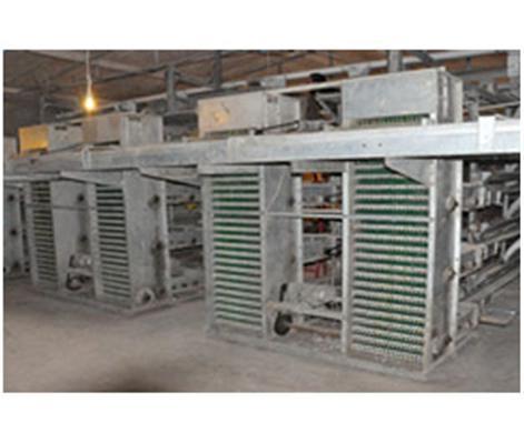 【汇总】如何维护养鸡机械 养鸡机械清洁工作有哪些