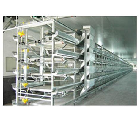 【汇总】养鸡机械的便利之处 养鸡机械冬季的维护问题