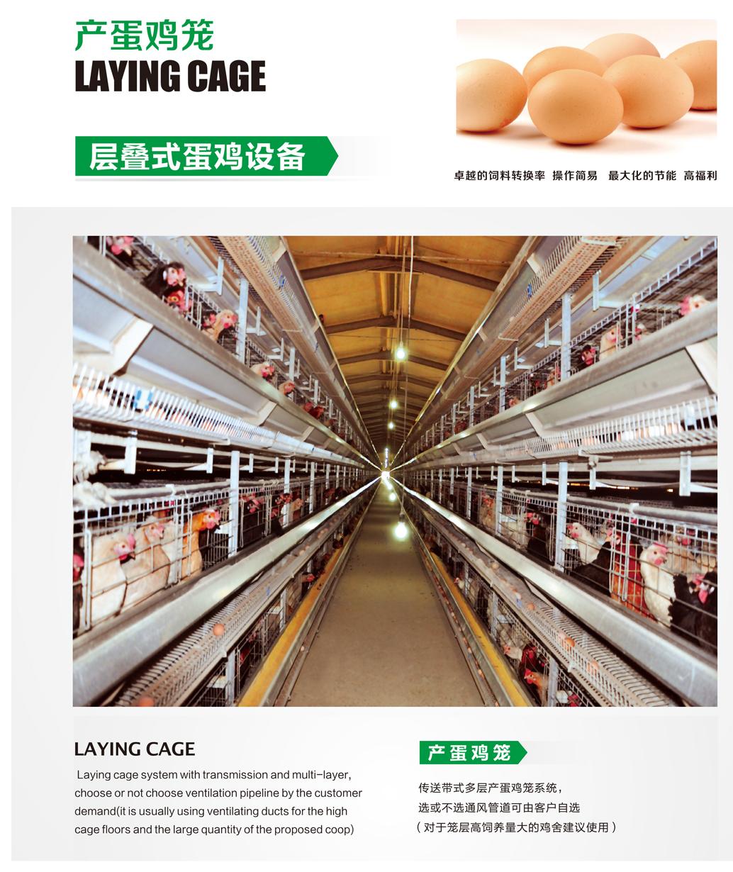 层叠式蛋鸡笼养设备