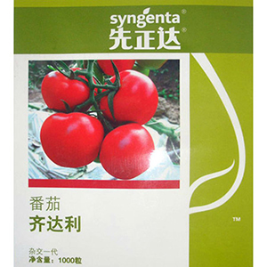 【技巧】为您讲述番茄种苗培植方法 <a href='/' target='_blank'>番茄种苗</a>床土该如何整理