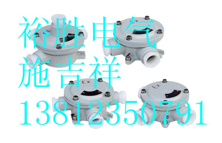 广东防爆接线盒型号