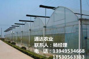 玻璃连栋智能温室