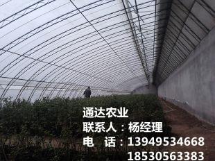 农业塑料平博pinnacle sports