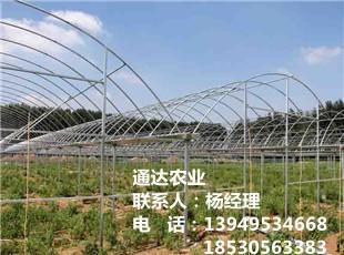 农用蔬菜平博pinnacle sports
