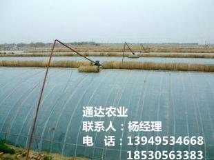 农业温室平博pinnacle sports