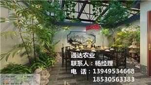 晋中生态餐厅