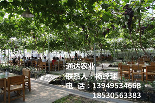 晋中生态园餐厅