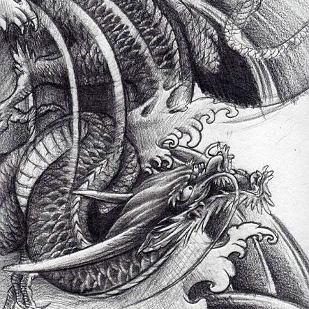 龙绘画作品图片