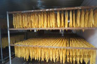腐竹条生产