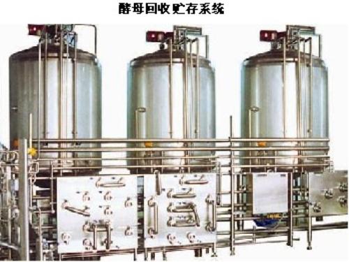 酵母回收贮存系统