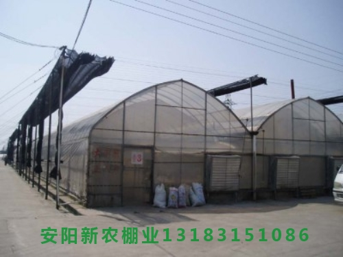 连栋大棚温室