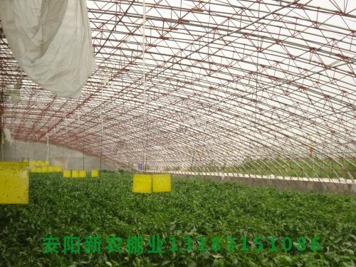 农用温室大棚骨架