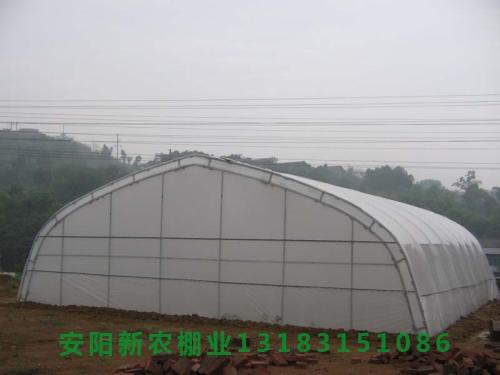 农用钢架大棚