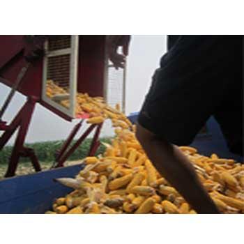 玉米联合收获机厂家