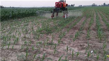 小型玉米追肥机