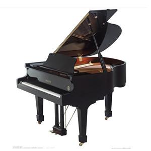 石家庄钢琴钢琴的是由什么组成的 三角钢琴顶盖使用技巧