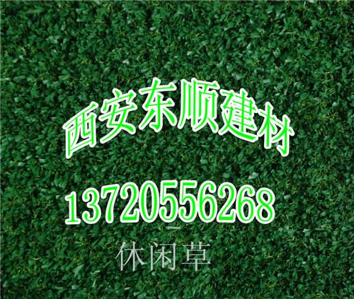 西安人造草坪公司