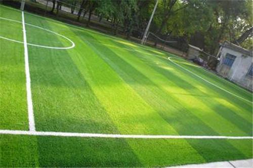 陕西人造草坪铺设