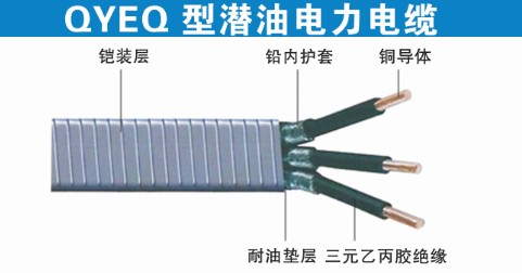 潜油电缆QYEQ