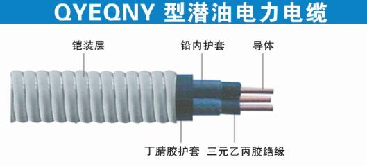 潜油电力电缆QYEQNY