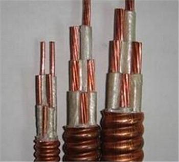 矿物质防火电缆生产厂家