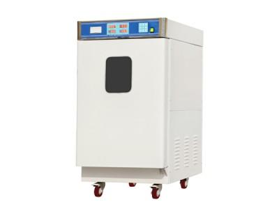 环氧乙烷灭菌柜(手动型立式)