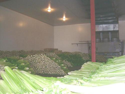 都匀贵阳蔬菜保鲜冷库