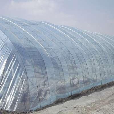 蔬菜大棚棚膜