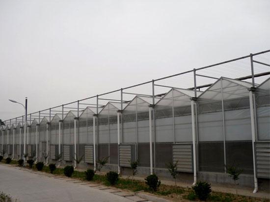 郑州PC板温室价格