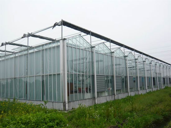 智能温室大棚厂家