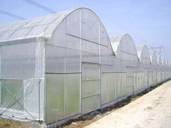 冬季蔬菜大棚的使用