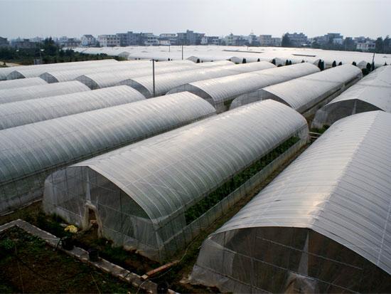 河南温室厂家供应