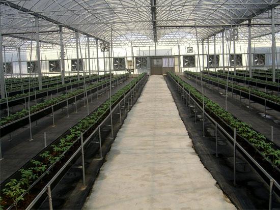 温室建筑材料供应