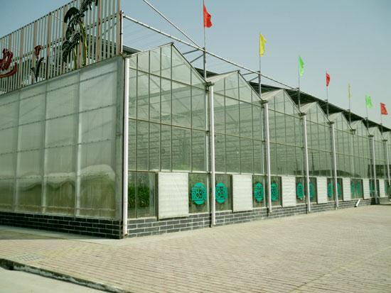 阳光板智能温室价格