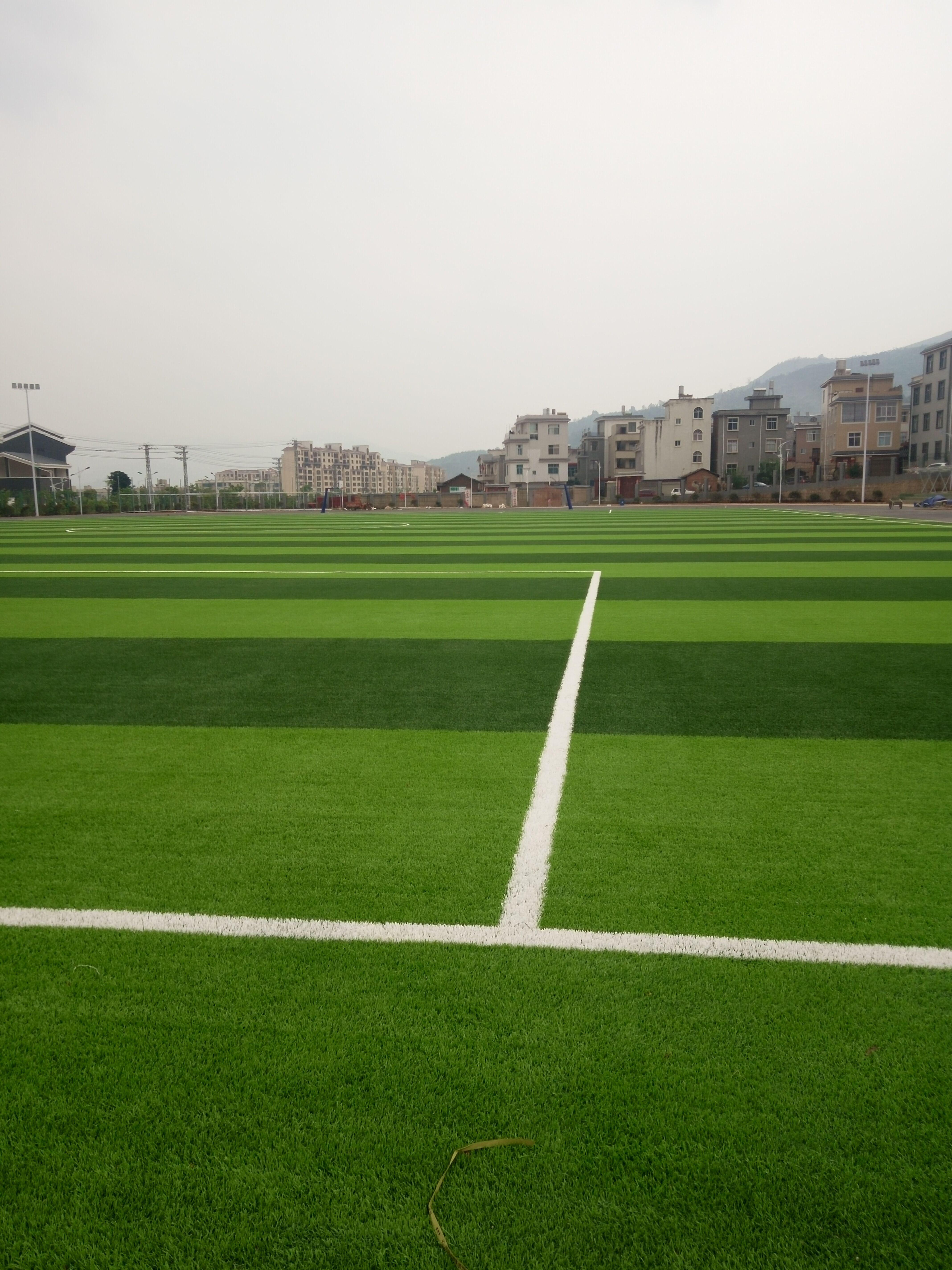 迪庆州香格里拉人工草坪