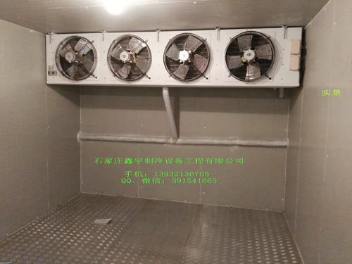 【专家】小型冷库安装 冷库内货架应有足够强度