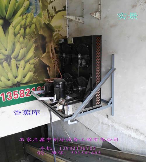 水果保鮮冷庫