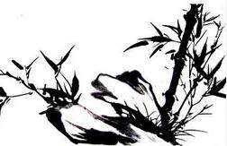 南京字画质押贷款