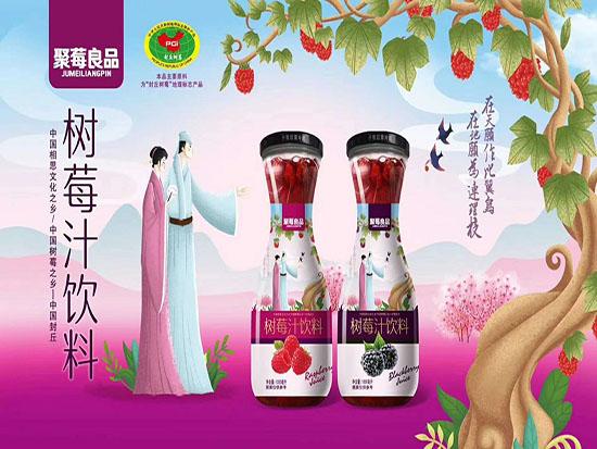 树莓汁饮料