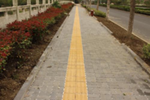 泰州济川东路缝隙透水改造