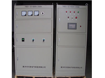 THDY10-600V/250A�存��� �