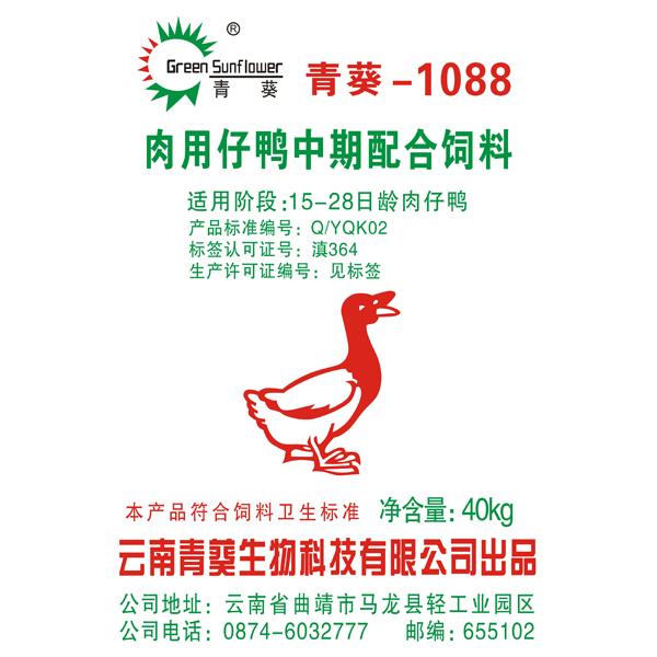 青葵1088肉用仔鸭中期亚博体育官方登陆