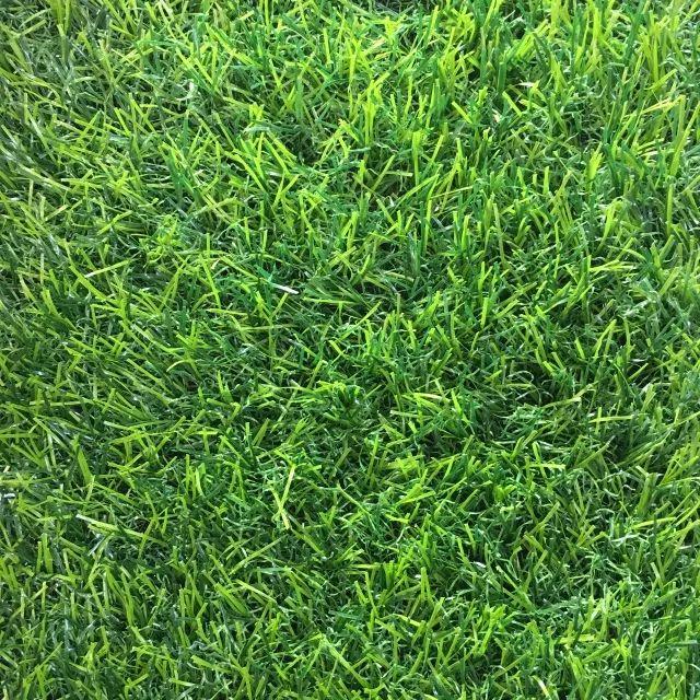 C2.0单色.重庆仿真草坪