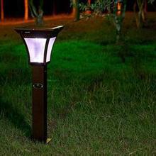 草坪灯夜景