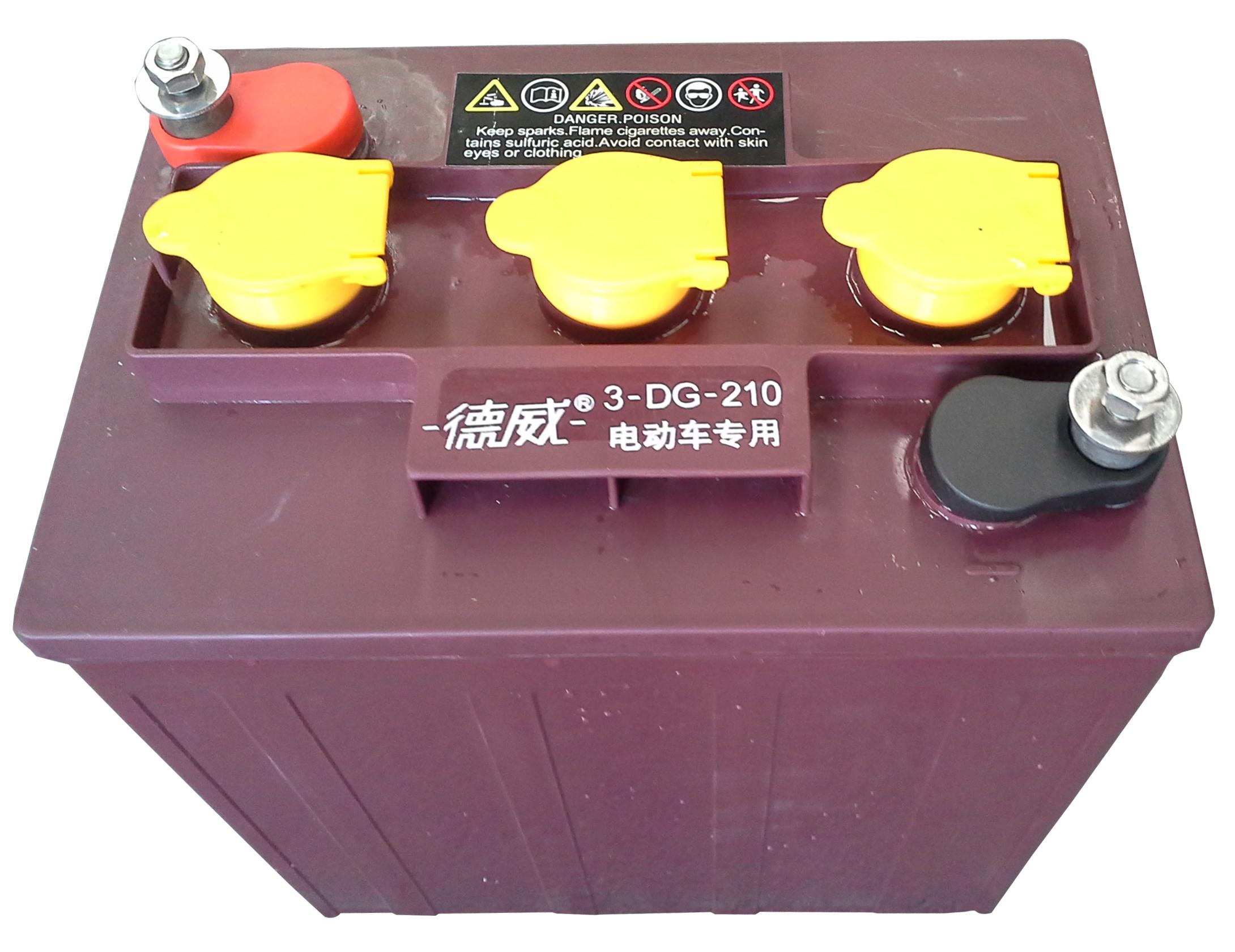 旅游观光车用蓄电池3-DG-210