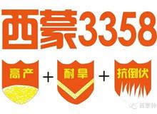 西蒙3358