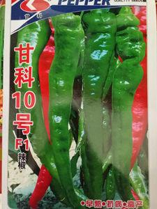 茄果類種子