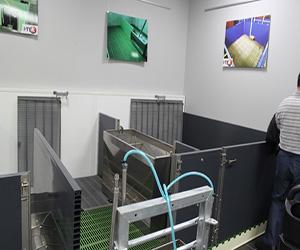 【图解】法国养猪模式怎么养猪 猪用干燥粉适用于什么