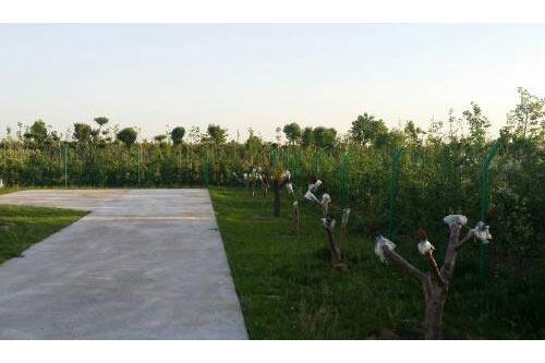 河南绿化施工